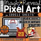 Basketball Madness Digital Pixel Art Magic Reveal ADDITION