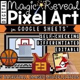 Basketball Madness Digital Pixel Art Magic Reveal MULTIPLICATION
