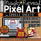 Basketball Madness Digital Pixel Art Magic Reveal MULTIPLICATION