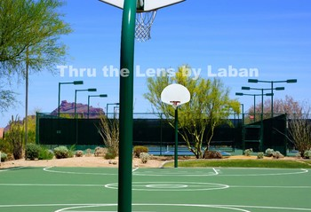 Basketball and Tennis Court Stock Photo #118