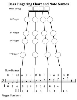 Bass Fingering Chart and Note Names