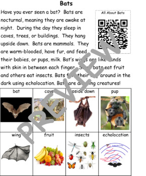 Bast: Informational Text and Writing Activity
