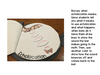 Bat Activities Book Craftivity