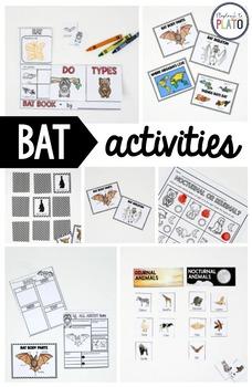 Bat Animal Study