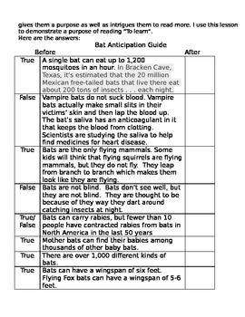 Bat Anticipation Guide