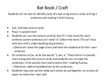 Bat Book / Craft