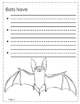 Bat Booklet
