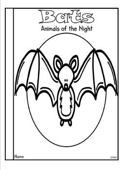 Bat Bundle