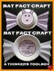 Bat Fact Craft