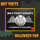 Bat Fact Craft