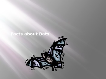 Bat Fact Powerpoint