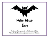 Bat Fact Writing