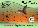 Bat Facts - Animated Step-by-Step Science - Regular