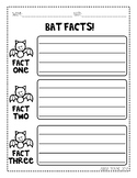 Bat Facts Freebie!