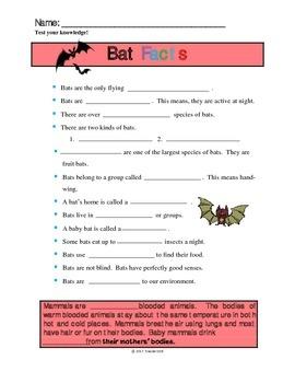 Bat Facts Handout