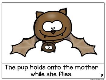 All About Bats Reader & Bat Lifecycle Reader