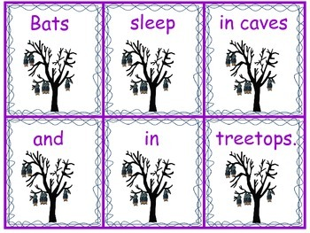Bat Facts Sentence Scramble