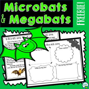 Bat Freebie! Microbats and Megabats