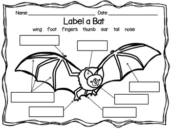 Bat Glyph with Writing Options