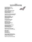 Bat Information Song