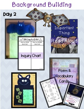 Bat Lapbook for First and Second Grade - Common Core Aligned