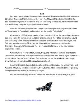 Bat Unit October Unit Fall Unit Halloween