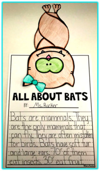Bat Life Cycle