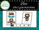 Bat Life Cycle Activities