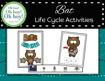 Bat Life Cycle Activities