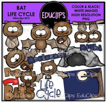 Bat Life Cycle Clip Art Bundle {Educlips Clipart}
