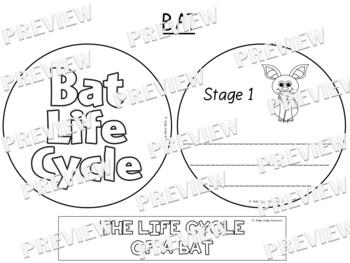 Bat Life Cycle Factball and Comprehension Sheet