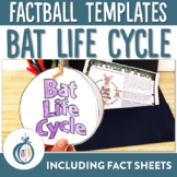 Bat Life Cycle Factball and Comprehension Sheet