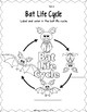 Bat  Life Cycle: Mini Unit