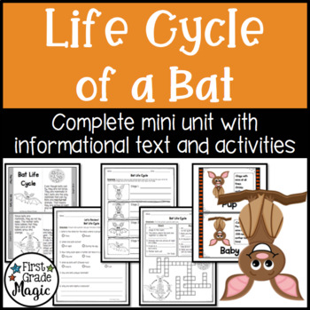 Bat Life Cycle Unit - Informational Text and Activity Sheets