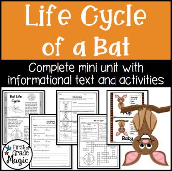 Bat Life Cycle Unit - Informational Text and Activity Sheets