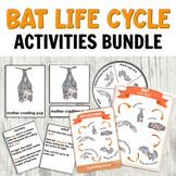 Bat Life Cycle with 3 Part Cards, Spinner, Poster & More for Hands-on Learning!