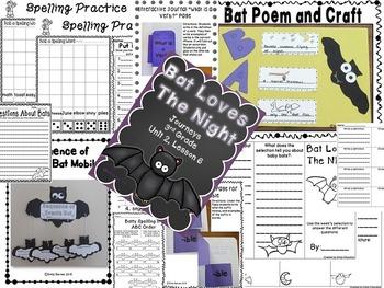 Bat Loves The Night Journeys 3rd Grade Unit 2 Lesson 6 Activities