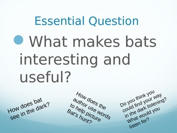 Bat Loves the Night PPT Journeys Lesson 6