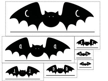 Bat Measurement Activity