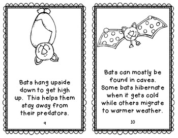 Bat Mini Book 2 Versions