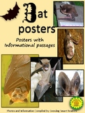 Bat Posters with Informational Paragraphs