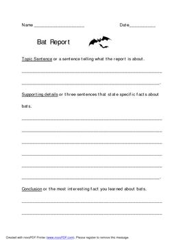 Bat Report Template
