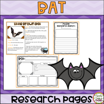 Bat Research Pages: Read and write about 7 species of bats