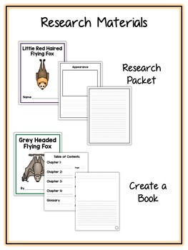 Bat Research Project - 13 Types, Vocab Cards, Packet, Book  + More!