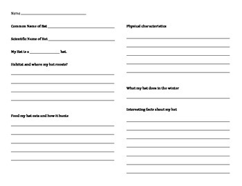 Bat Research Report Sheet