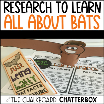 Bat Research