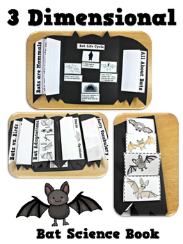 Bats Science Interactive Activities