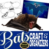 Bats! (Craft and Graphic Organizers) bundle