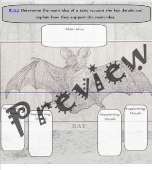 Bat Themed Main idea and Detail Graphic Organizer