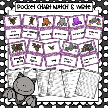 Bat Themed Pocket Chart Pictures & Word Cards